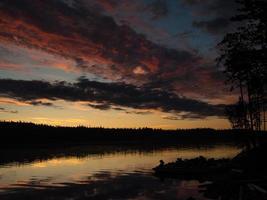 Silhouetten von Bäumen und Booten foto