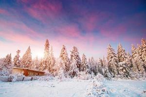 Haus in einem Winter foto