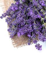 Lavendel auf Sackleinen foto