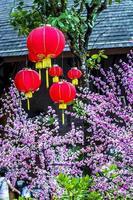 cny Dekorationen foto