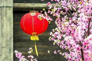 chinesisch rot latern foto