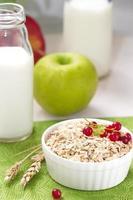 Haferflocken mit roten Johannisbeeren, Milch und Äpfeln zum Frühstück