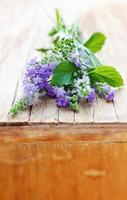 Bündel aromatischer Kräuter: Lavendel, Salbei, Minze, Thymian