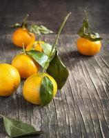 frische Mandarinen foto