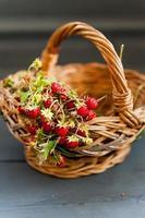wilde Erdbeeren foto