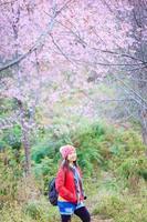Reisende der jungen Frau, die im Kirschblütengarten genießt foto