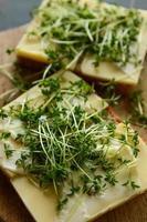 leckeres Brot mit Käse und Kresse garnieren foto