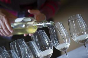 Önologie-Wein-Gießen-Glas foto