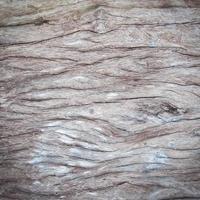 rustikaler Holzhintergrund, altes strukturiertes Holz foto