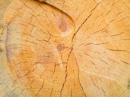 Holz Hintergrund. foto
