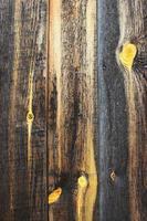 Textur von altem Holz