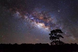 Silhouette des Baumes und der Milchstraße. Langzeitbelichtung Foto. foto