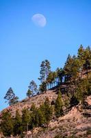 großer Mond foto