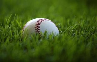 sicherer Ort für einen Baseball. foto
