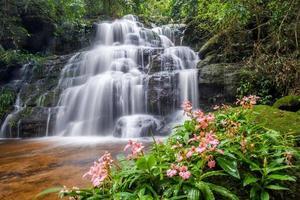 schöner Wasserfall mit rosa Löwenmaulblume im Vordergrund foto