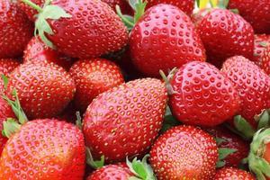 einige Erdbeeren foto