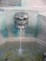 Trinkbrunnen in Zürich foto
