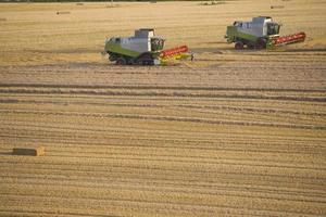 kombiniert die Ernte von Weizen auf sonnigen, ländlichen Feldern foto