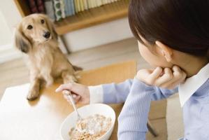 Hund schaut in Frau beim Essen foto