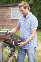 Landwirt pflanzt Setzlinge auf Bio-Bauernhof foto