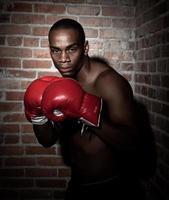 Boxer im Rampenlicht kampfbereit foto