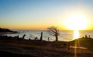 Silhouette eines lokalen Jungen, der in Pemba, Mosambik, Afrika tanzt. foto