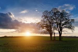 Sonnenuntergang über Frühlingsfeld im Land foto