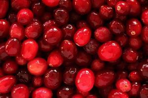 Cranberry Textur foto
