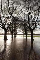 überflutete Spielfelder foto