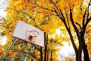 alter Basketballring mit schönen Herbstbäumen im Hintergrund
