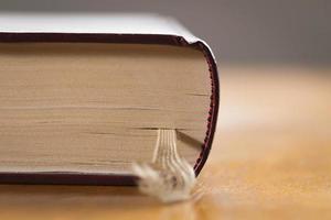 Buch foto