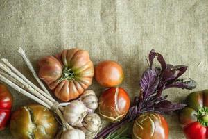 Gemüse mit einem Kopierraum oben