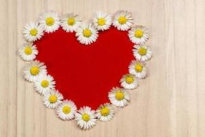 Herz aus Gänseblümchen, Kopierraum foto