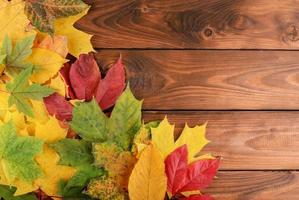 Herbstlaub über hölzernem Hintergrund mit Kopienraum