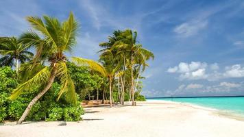 Blick auf die Küste der tropischen Insel foto
