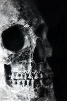 Nahaufnahme des rissigen und beschädigten menschlichen Schädels foto