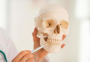 Doktorfrau zeigt auf Zähne des menschlichen Schädels zeigend. Nahansicht foto
