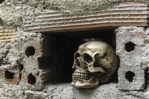 Schädel oder Skelett der menschlichen Fotografie