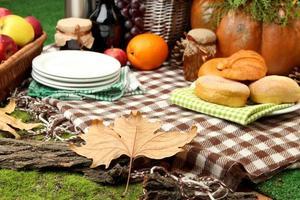 Picknick im Freien hautnah foto
