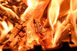 Holzfeuer hautnah
