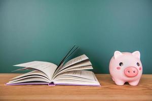 Sparschwein auf Bücher