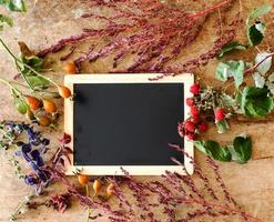 Pflanzen mit leerer Tafel foto