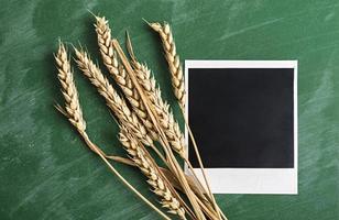 Polaroid Fotorahmen mit Weizen auf grüner Tafel. foto