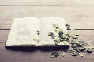 geöffnetes Buch mit Blättern auf Holztisch foto