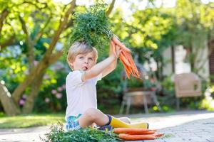 niedlicher kleiner Junge mit Karotten im heimischen Garten