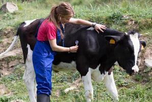 Tierarzt auf einem Bauernhof foto