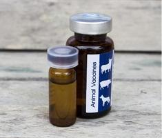 Tierimpfstoff für Tiere zur Heilung von Tierhaut, weich fokussiert foto