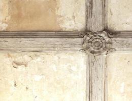 Tudor Rose Decke foto