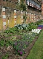 ummauerter Garten foto