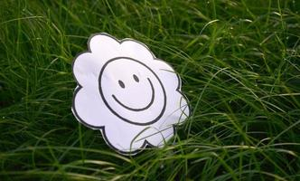 Malbuchblume in einem grünen Gras foto